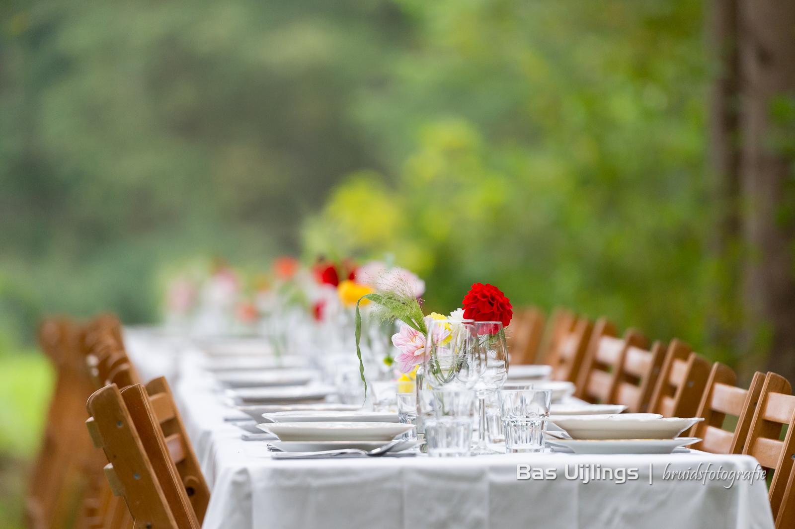 buiten diner lange tafels in het gras den Dolder
